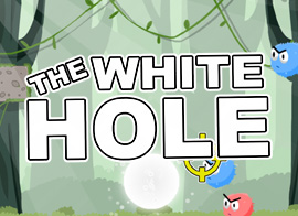 The White Hole
